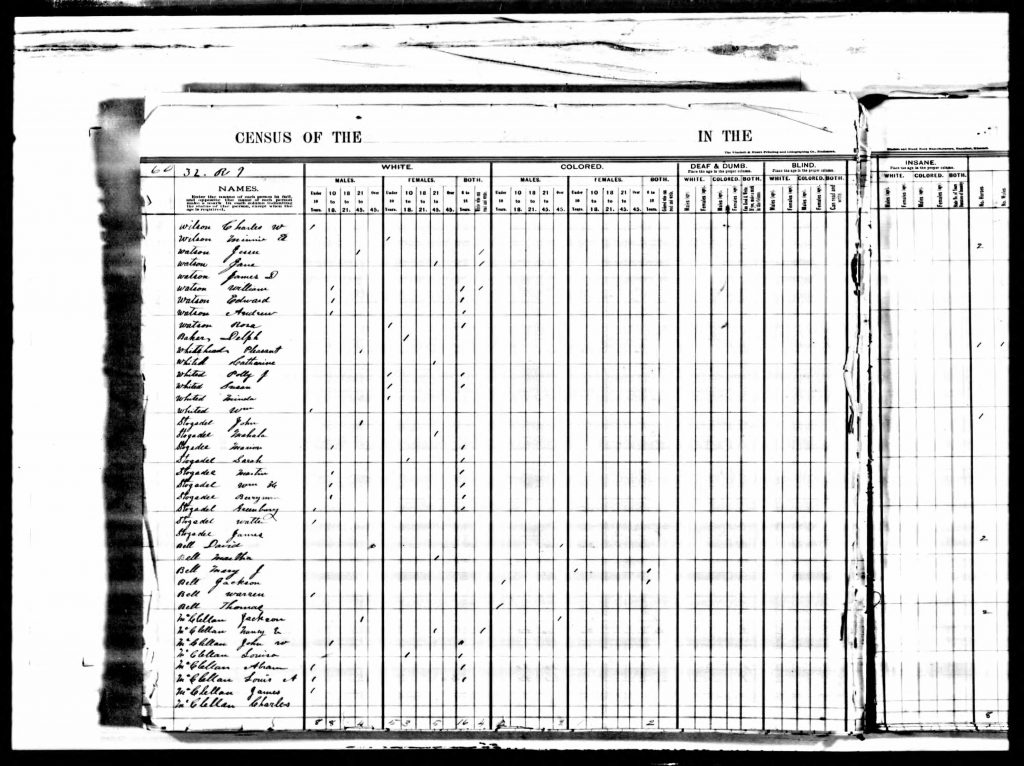 John and Mahala Stogsdill on 1876 Missouri State Census in Texas County., Missouri